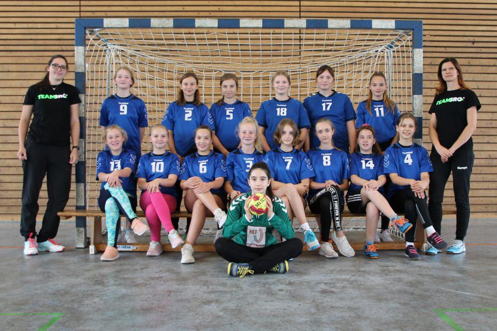 Weibliche D-Jugend, HSV Weinböhla, Kreisliga Elbe-Röder, Saison 2020/2021